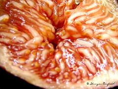 Carne de higo por YURYEN