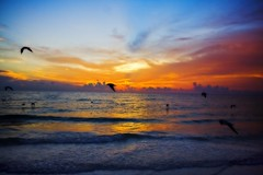 Sunset on the Gulf (kotobuki711) Tags: ocean blue sunset red orange sun seagulls beach water yellow clouds mexico sand gulf florida gulls fl stpete orton passagrillebeach