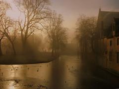 Bruegel in Brugge (filippo rome) Tags: winter belgium brugge bruges flanders bruegel