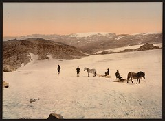 [Folgefond Glacier, Hardanger Fjord, Norway] (LOC) (The Library of Congress) Tags: horse color norway norge glacier colorized ponies libraryofcongress hordaland sleds hardanger noreg folgefonna folgefonni photochrom xmlns:dc=httppurlorgdcelements11 detroitpublishingcompany drivinghorse dc:identifier=httphdllocgovlocpnpppmsc06134