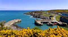 Amlwch Tiny Harbour (ellesmere FNC) Tags: sea summer wales port landscape coast harbour angelsey amlwch tiltshift canoneos7d ellesmerefnc