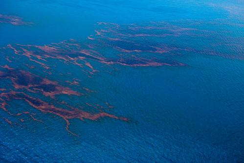 20100618-tedx-oil-spill-1193