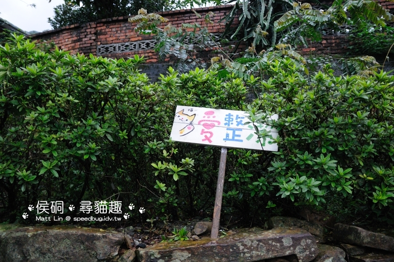 DSC_4626_01.JPG