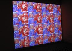 documenta 12 | Churchill Madikida / Virus | 2005 | Neue Galerie