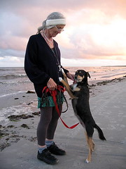 My mother 76 years old and her little new dog Tella. (Tante Bluhme's) Tags: ocean old summer portrait dog happy skne searchthebest sweet sweden mother bullseye coolest beautifulearth outstandingshots mywinners abigfave superbmasterpiece