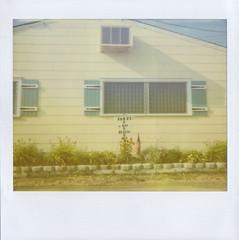 booze, bay, beach. (jena ardell) Tags: summer vacation window sign polaroid airconditioner shutters ac beachhouse bungalow yellowhouse downtheshore jenaardell personalityandcharacter boozebaybeach
