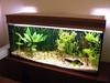 Unpainted DIY Aquarium Hood