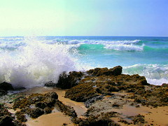 A Gift from the Sea (Sandra_R) Tags: ocean sea santacruz beach portugal nature water weather outdoors photography marine rocks afternoon exterior natural wave nobody splash blast naturalworld clearsky clearwater stacruz naturesfinest