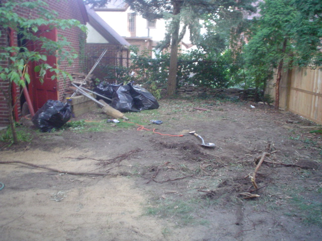 Backyard blank slate