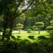 a park in guangzhou 2