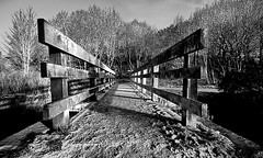 The Jaws of My Journey (Oliver Wood Photography) Tags: blackandwhite ir cheshire infrared session2 prestbury riverbollin