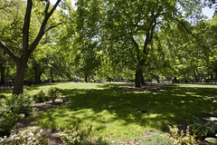 -- (felix.castor) Tags: nyc grass spring shadows may ev thursday tsp tompkinssq sometrees 051310