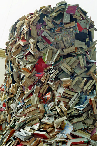 Alicia Martin: Biografias - Cascade of books by library_mistress, on Flickr