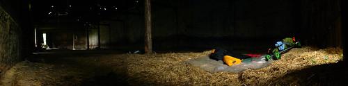 Nice soft hay to sleep on near Viersen, Germany