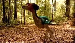 02 Gastornis go hunting