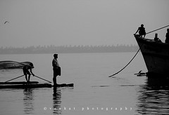 Unload (venkatfotos) Tags: fish fishermen chennai fishmarket backwater unload venkat canon40d canon75300mmlens venkatphotography