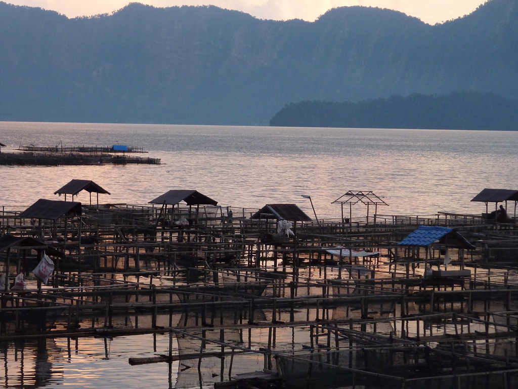 Sumatra-Lac Maninjau (184)