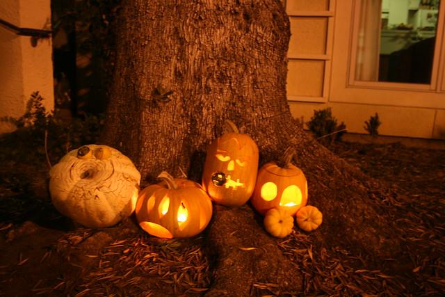 our little pumpkins