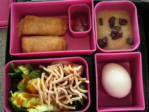 Bento Box Lunch 9-30-10