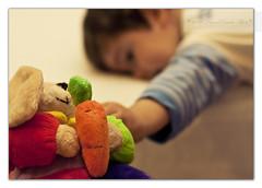 (Daniel Garcia Photography) Tags: boy rabbit canon 50mm dof play conejo nio juguete pdc peluche zanahoria 50mmf14usm 40d canoneos40d