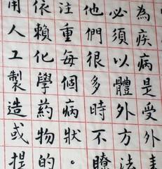 Chinese script by heidi schempp fournier, on Flickr