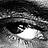 Elementi di lele_rozza