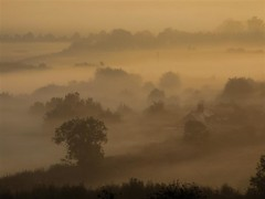 Sunrise mist (DAC @ N51 W002) Tags: sun mist nature silhouette sunrise moody photographer earlymorning excellent awards tranquil naturalworld thatsbostin