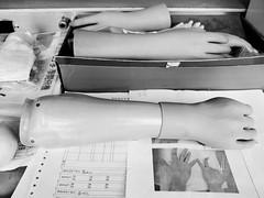 Hands (BrianQWebb) Tags: hand arm leg taiwan workshop tw prosthesis amputation amputee orthopedic artificiallimb tehlin tehlinprosthetic