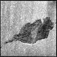 (Ex) Cava a filo di gesso (gandalfk7) Tags: hasselblad kodaktrix rodinal planar epson4490 planar80mmf28 gossenlunasix3 hasseblad500cm