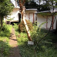 Inter-University Seminar House 36  (Unit House)