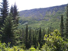 Mont Jacques Cartier 07 (HWillox) Tags: quebec gaspesie