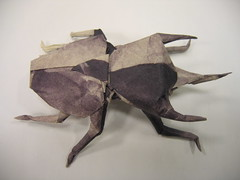 Caucasus Giant Beetle (PhillipWest) Tags: origami paperfolding papiroflexia