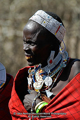 TZ-NG-0387 (MountainWorld) Tags: poverty africa old pierced woman senior tanzania one 1 village african teeth traditional poor conservation impoverished jewelry piercing mature elderly elder ear area pierce aged citizen masai maasai earlobe necklaces destitute masaai africans ngorngoro tanzanian lobe ngorongoroconservationarea