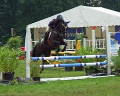 Show jumping (sillie_R) Tags: horse jump horseshow showjumping