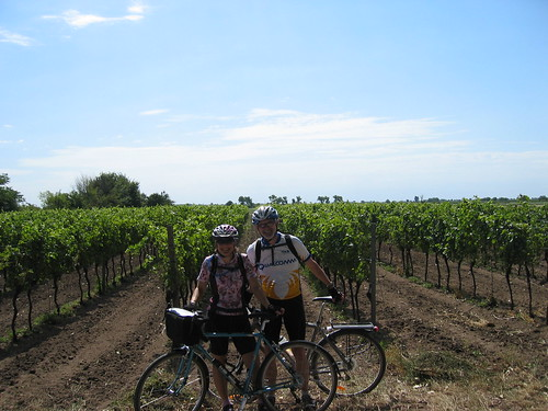 Us by a vineyard