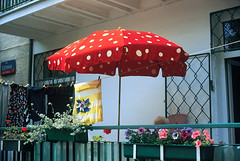 MYKO_008 (VonMurr) Tags: nature mushroom umbrella weird poland artificial fantasy poison dots amanitamuscaria bizarre artificialnature muchomor