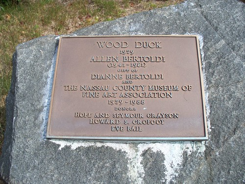 Wood Duck Plaque