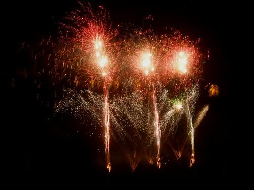 Liverpool Sefton Park Fireworks 2010