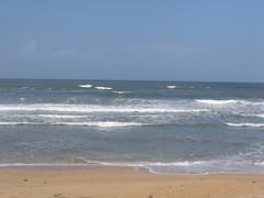 Taj Exotica Goa beach