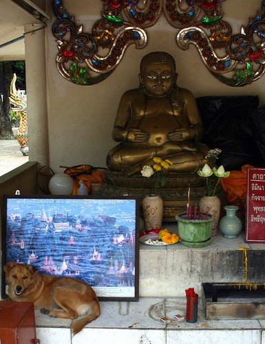 Buddha with dog