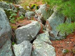 P1030374.jpg (airwaves1) Tags: 1000islands stlawrenceriver july282007 yeoisland