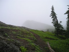 Trail to fog