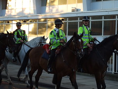 The Police Horses make their way home after the Investec Challenge - England vs. France