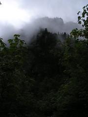 Shades of Mt Dickerman
