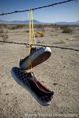 b984670c37f0 Vans (Wayne Stadler Photography) Tags  trees hot abandoned trash fence wire  shoes desert