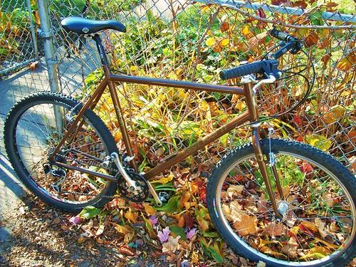 Capricorn Mountain Bike