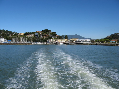 Ferry's wake