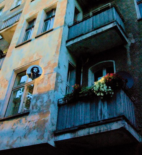 flowers, revolution
