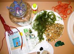 pond biosphere biology ecosphere macrophotography microcosm makemagazine cephalopodcast biojar