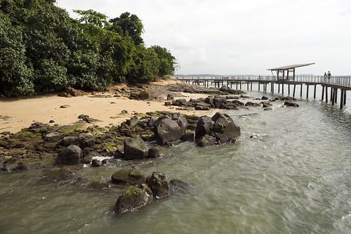 boardwalk by rocks